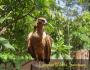 Lumphat Wildlife Sanctuary - Ratanakiri